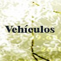 Vehiculos 9 Plazas
